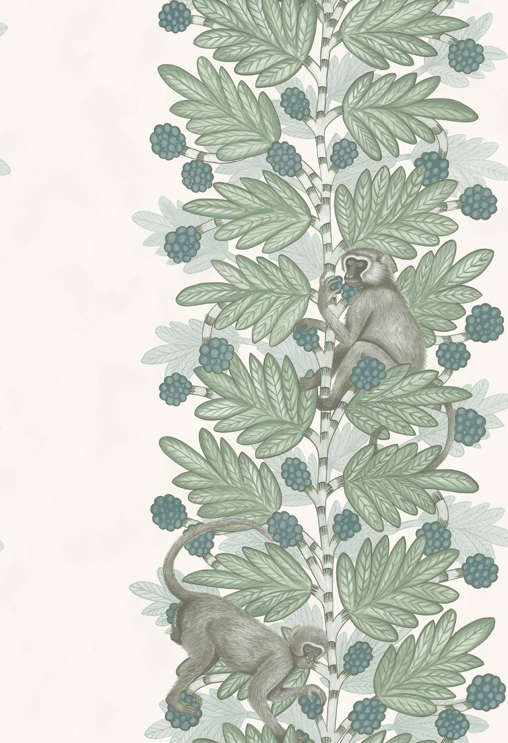109-11052 Acacia- The Ardmore Collection- Cole & Son - 72dpi - RGB