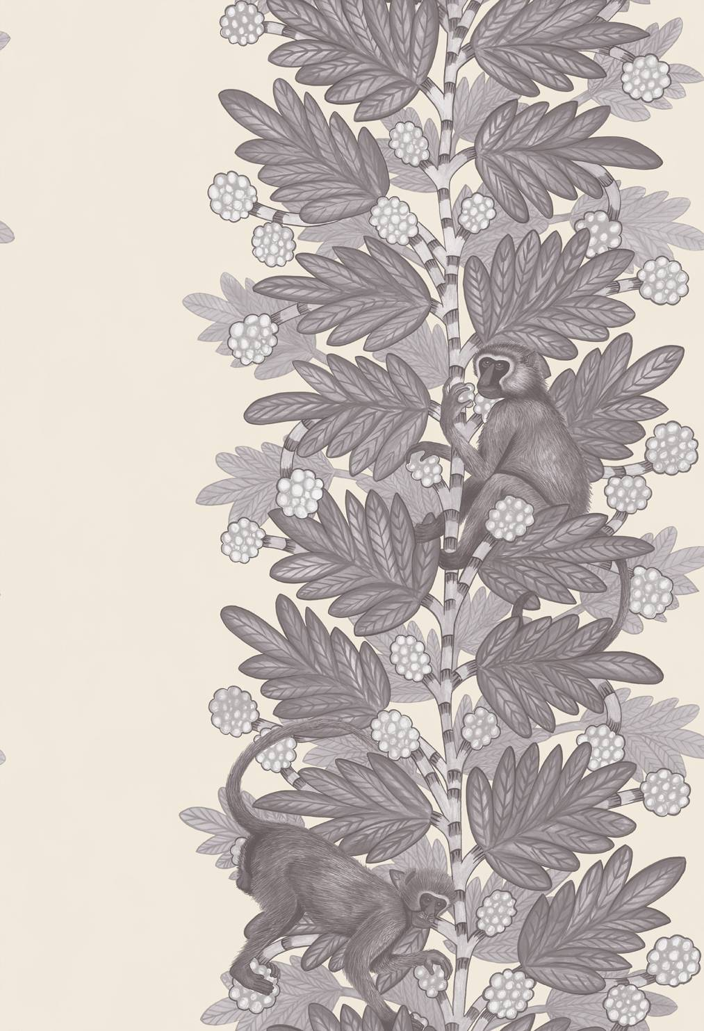 109-11053 Acacia- The Ardmore Collection- Cole & Son - 72dpi - RGB