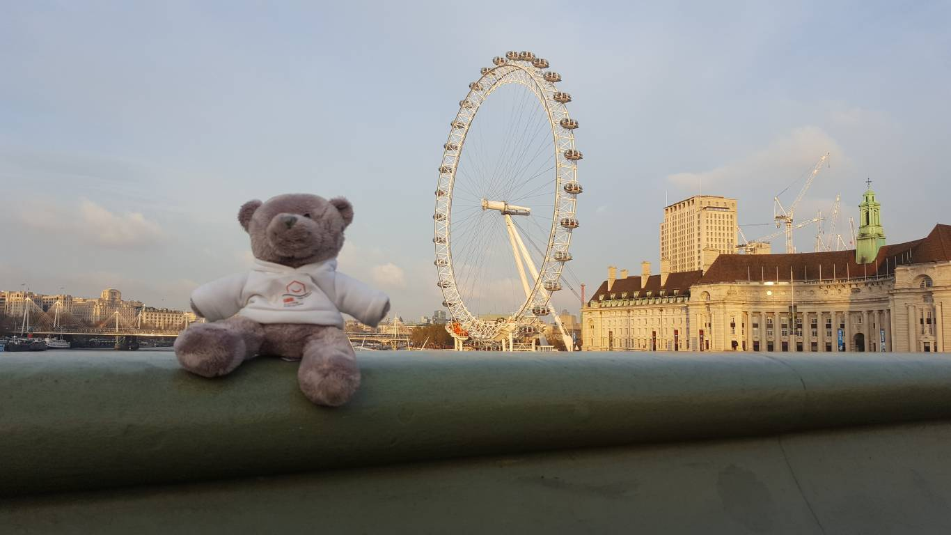 Teddy on Tour